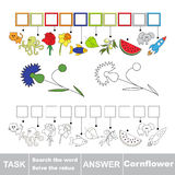 Vector game. Search the word. Find hidden word Cornflower Stock Photo