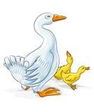 Vector gansmoeder met gansjejonge geitjes Royalty-vrije Stock Afbeelding