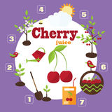 Vector garden illustration in flat style Royalty Free Stock Photography