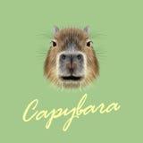 Vector Geïllustreerd Portret van Capybara royalty-vrije illustratie