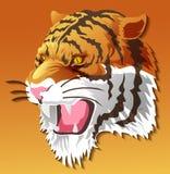 Vector geïsoleerd tijgerhoofd op kleurenachtergrond stock illustratie