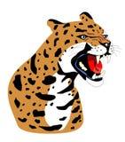 Vector geïsoleerded luipaard Royalty-vrije Stock Afbeeldingen