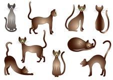 Vector geïsoleerdeg katten Royalty-vrije Stock Fotografie