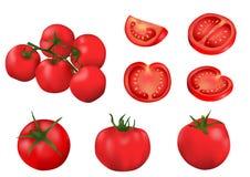 Vector geïsoleerdei tomaten Stock Foto's