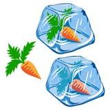 Vector gefrorene Karotte im Eiswürfel, der auf weißem Hintergrund ENV 8 lokalisiert wird Stockbild