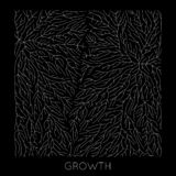 Vector generative branch growth pattern. Lichen like organic structure with veins. Monocrome square biological net of. Vessels royalty free illustration