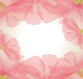 Vector gentle background of pink flower petals Stock Image
