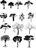 Vector geplaatste bomen Stock Fotografie