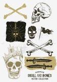 Vector Geplaatste Piraatschedel en Beenderen royalty-vrije illustratie