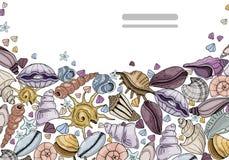 Vector geplaatste zeeschelpen royalty-vrije illustratie