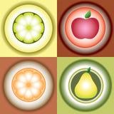 Vector gestileerd beeld van vruchten Royalty-vrije Stock Foto