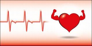 Vector gezond hart Royalty-vrije Stock Afbeeldingen