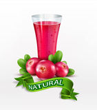 Vector glass cup with juice of cranberries isolated  Stock Photo