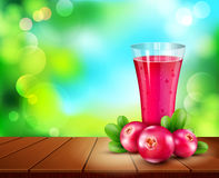 Vector glass cup with juice of cranberries standing on a wooden. Table on the background of the sky and green foliage Stock Image