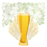 Vector glass of froth beer with ornate wreath of Hops and barley ears  on white. Contour hops, barley for Oktoberfest, beer and brewery decor. Beer elements in Royalty Free Stock Image