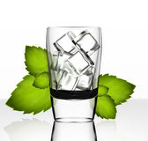 Vector glass with ice and mint Stock Photos