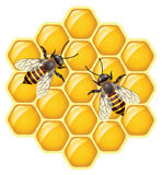 vector gli api sui honeycells Immagini Stock