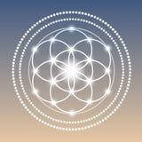 Vector Gloeiende Bloem van de Illustratie van het het Levenssymbool Stock Fotografie