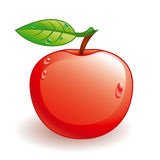 Vector glossy apple. With some water drops Stock Photos