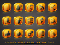 Vector glossy social networking icons Stock Images