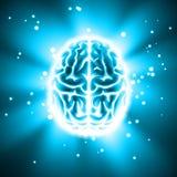 Glowing human brain vector illustration