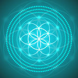Vector Glowing Flower of Life Symbol Illustration Stock Images
