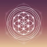 Vector Glowing Flower of Life Symbol Illustration on a Gradient Background. Vector Glowing Flower of Life Symbol Illustration on a Gradient Sunset Background Stock Image
