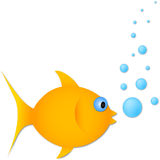 Vector gold fish with bubbles Stock Images