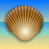 Vector gold shell illustration on the summer sea Stock Photo