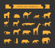 Vector gold silhouettes of African animals. Royalty Free Stock Image