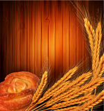 Vector golden ears of wheat and bread roll Royalty Free Stock Image