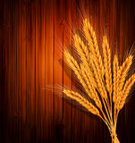 Vector golden ears of wheat on the wooden backgrou Stock Photo