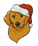 Vector golden retriever in santa hat Stock Images