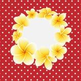 Vector gouden frangipani of plumeriabloem op stip achtergrondprentbriefkaar stock illustratie