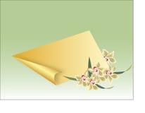 Vector gouden nota met krul Stock Foto