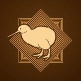 Vector gráfico derecho del pájaro del kiwi ilustración del vector
