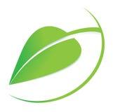 Vector grünes Blattlogo, Geschäftslogo, organisches Symbol, natürliche Ikone, editable Grafikdesign Stockbild