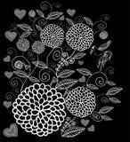 Witte uitstekende bloemen op zwarte achtergrond Vector Illustratie