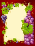 Vector grape frame with bottle Stock Photography