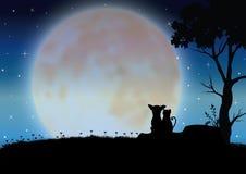 Vector graphhics Romantische hond en kat Stock Fotografie