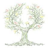 Vector graphic green branchy tree with birds Stock Photography
