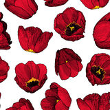 Vector graphic hand-drawn ink seamless pattern of red tulip Stock Photo
