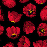 Vector graphic hand-drawn ink seamless pattern of red tulip Stock Photography