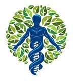 Vector graphic illustration of muscular human depicted as DNA st Royalty Free Stock Photography