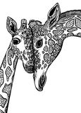 Vector graphic illustration with two giraffes in love. Royalty Free Stock Photo