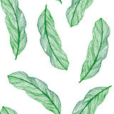 Vector graphic seamless pattern from green leaves Stock Photography