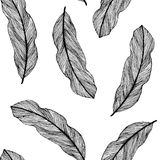 Vector graphic seamless pattern from silhouette leaves Royalty Free Stock Photos