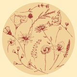 Vector graphic wildflower set Stock Photo