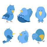 Vector grappige vogels Stock Fotografie