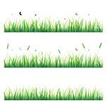 Vector gras met vlinder Stock Afbeelding